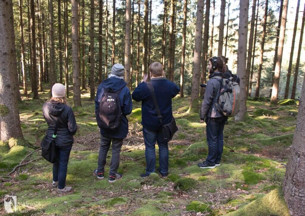 skog10_mh-1024x724
